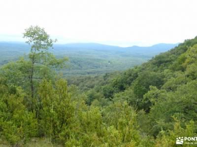 Parque Natural de Izki; imagenes de campamentos de verano rutas verdes madrid senderismo alcala de h